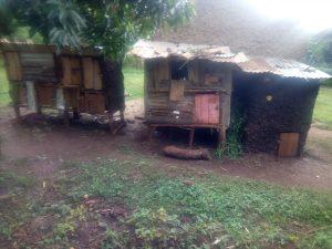 Rabbit hutches in Kenya